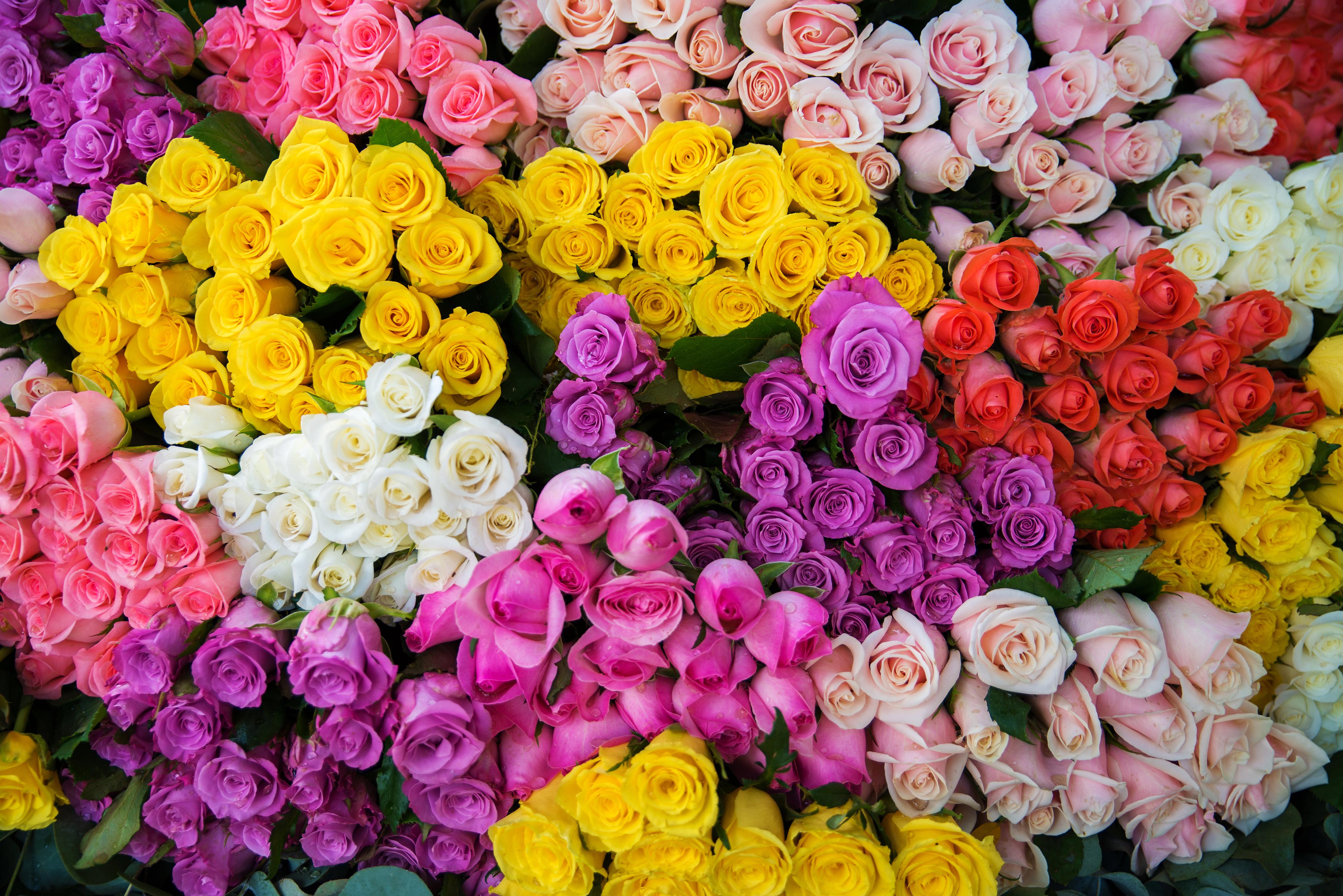 Fall Wedding Flowers   Rose Wedding Bouquet