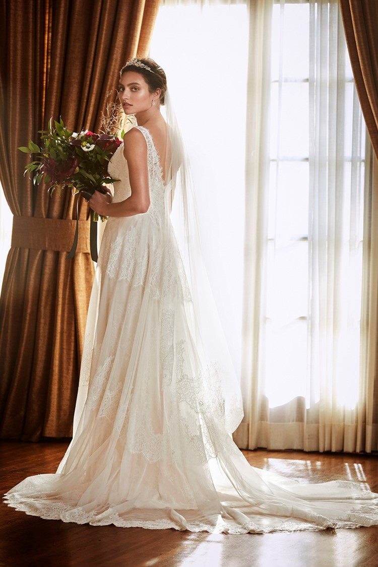 Wedding Dress and Matching Veils from David's Bridal